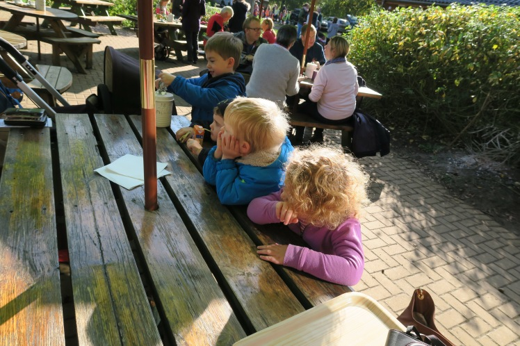 Lunch time at Forest Cafe Selcey Forest